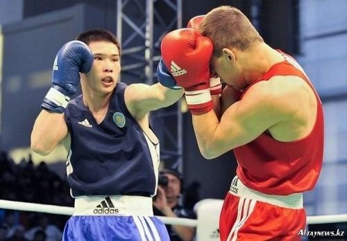 любительский бокс фото