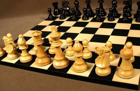 Қазақ қыздары Бүкіләлемдік шахматтан үздіктер қатарынан табылды