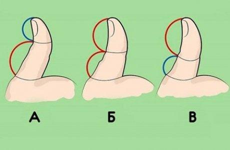 Психологиялық тест: Бармағыңыздағы сызық сіз жайлы қандай сыр айтады